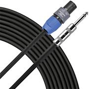 "Livewire 14-Gauge 1/4""-Speakon Speaker Cable - 100'"