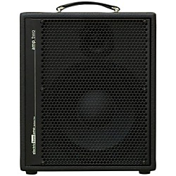 AER Amp-Two 240W Bass 1x12 Combo Amp (AMP-TWO)