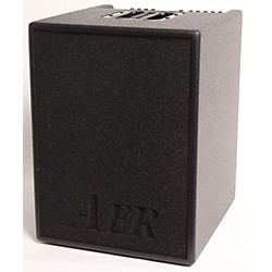 AER Basic Performer Acoustic Guitar Combo Amp (USED006002 BASICPERFORMER)
