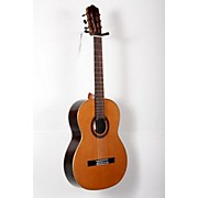 Alvarez Artist Series AC70 Classical Acoustic Guitar