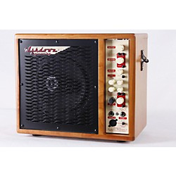 Ashdown Radiator 1 100W Acoustic-Electric Guitar Combo Amp (USED007002 AAR-1C-R)