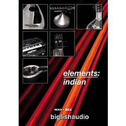 Big Fish Elements: Indian Audio Loops (EIN01-RW)