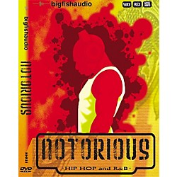 Big Fish Notorious Hip Hop and R&B Sample Library - DVD (NHRB1)