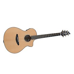Breedlove Solo Concert-Gold Acoustic-Electric Guitar (SOLCONCX)