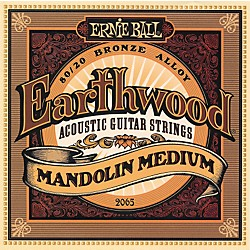 Ernie Ball 2065 Earthwood 80/20 Bronze Mandolin Medium Strings (P02065)