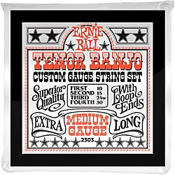 Ernie Ball 2303 Medium Gauge Tenor Banjo Strings (P02303)
