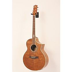Ibanez Exotic Wood Series EW20FHE Acoustic Electric Guitar (USED005003 EW20FHENT)