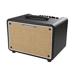 Ibanez Troubadour T150S 150W Stereo Acoustic Combo Amp (T150S)