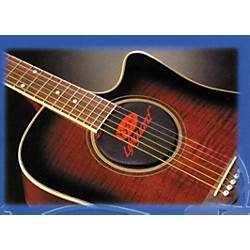 Kyser Lifeguard 6 or 12 String Acoustic Guitar Humidifier (KLHA)