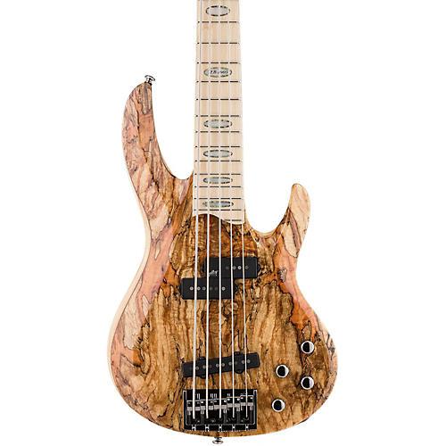 ESP LTD RB-1005 5 String Electric Bass Guitar-thumbnail