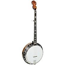 Gold Tone OB-250 Banjo