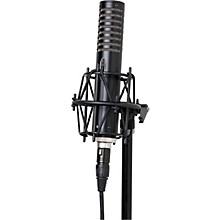 Royer R-101 Ribbon Mic