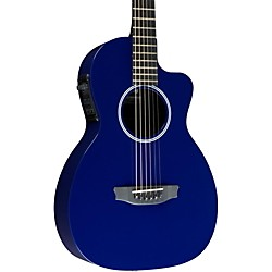 Rainsong P12 6-string Parlor with 12-fret NS neck (P12B)
