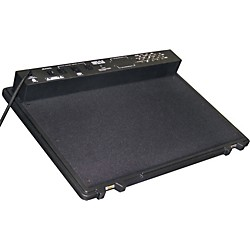 SKB PS-45 Professional Pedalboard (SKB-PS-45)