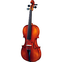 Strunal 260 Series Violin Outfit (260 FH 4/4)