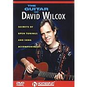 Homespun The Guitar of David Wilcox Instructional/Guitar/DVD Series DVD Performed by David Wilcox