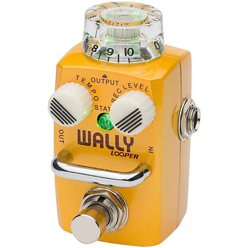 Hotone Effects Wally Looper Skyline Series Guitar Effects Pedal-thumbnail