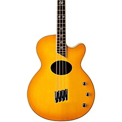 Washburn AB40SH Stu Hamm Acoustic-Electric Bass (AB40SHNK)
