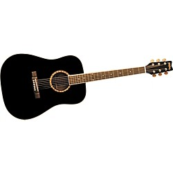 Washburn D100DL Acoustic Guitar (D100DLBK)