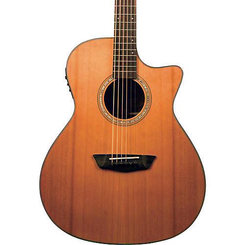 Washburn Woodline Series WLG110SWCEK Grand Auditorium Acoustic-Electric Guitar-thumbnail