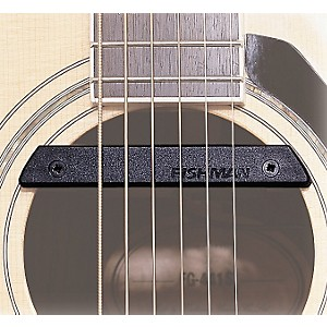 Fishman-Rare-Earth-Pro-Rep-102-Humbucking-Soundhole-Pickup-Standard