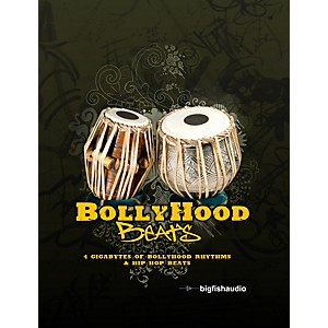 Big-Fish-Bollyhood-Beats-Sample-Library-Standard