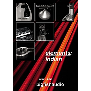 Big-Fish-Elements--Indian-Audio-Loops-Standard