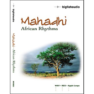 Big-Fish-Mahadhi---African-Rhythms-Audio-Loops-Standard