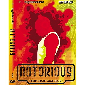 Big-Fish-Notorious-Hip-Hop-and-R-B-Sample-Library---DVD-Standard