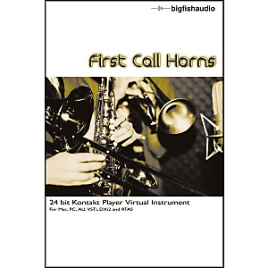 Big-Fish-First-Call-Horns-Sample-Library-Standard