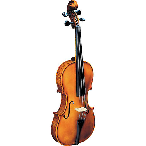 Strunal 193WA BH Concert Violin Outfit-thumbnail