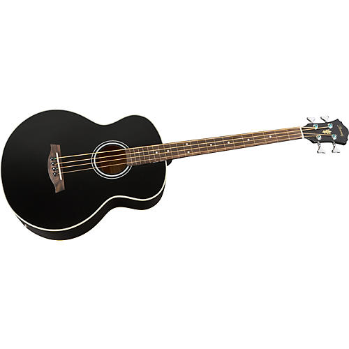 Ibanez AEB5FE Fretless-Acoustic Electric Bass thumbnail