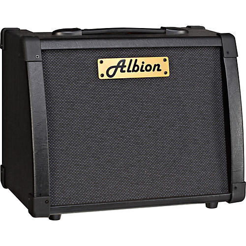 Albion Amplification AG Series AG40R 40W Guitar Combo Amp-thumbnail