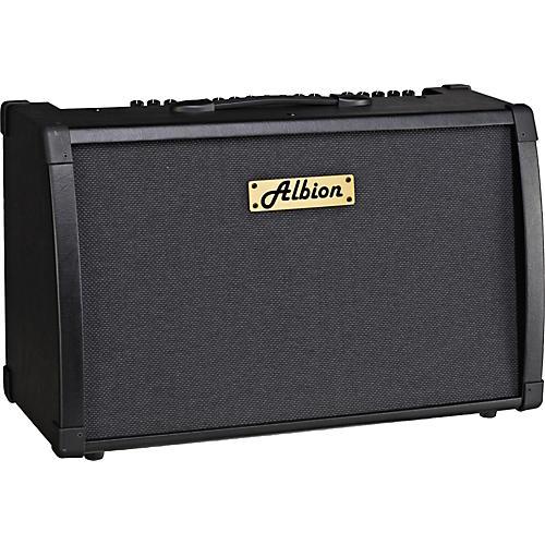 Albion Amplification AG Series AG80DFX 80W Guitar Combo Amp-thumbnail