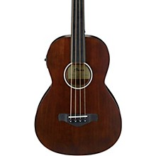 Ibanez AVNB1FE Fretless Parlor Acoustic-Electric Bass Guitar