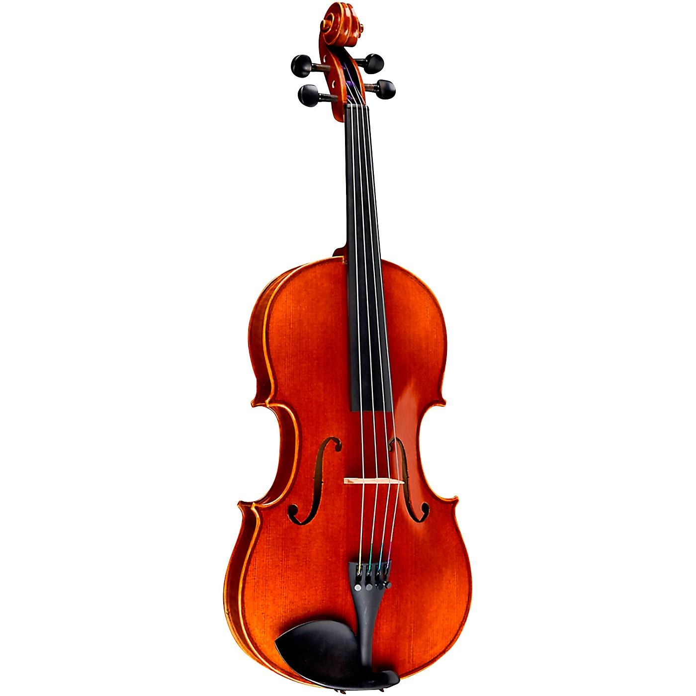 Ren Wei Shi Academy II Series Violin Outfit thumbnail