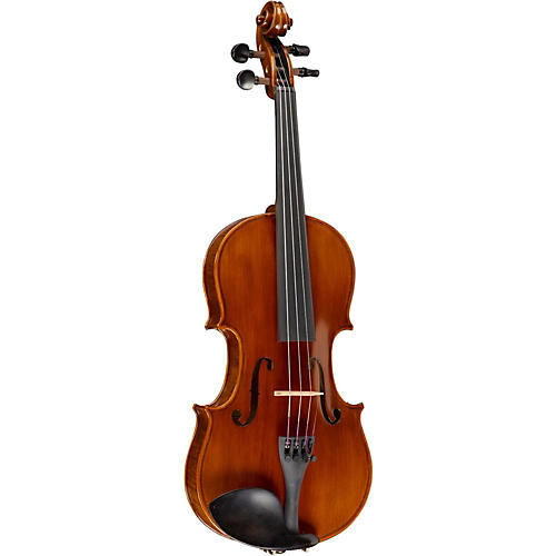 Ren Wei Shi Academy Series Violin Outfit thumbnail