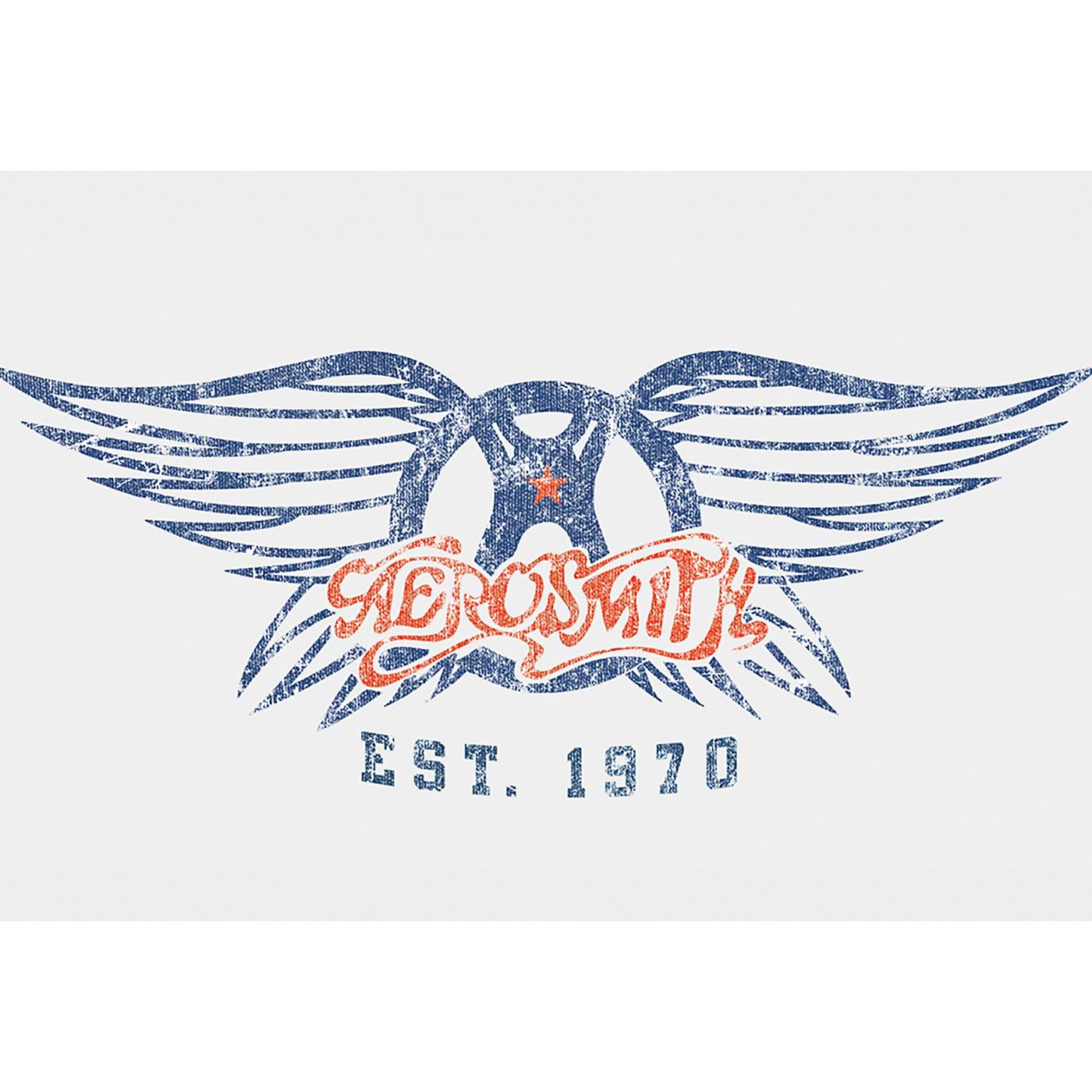 C&D Visionary Aerosmith Est. 1970 Magnet thumbnail