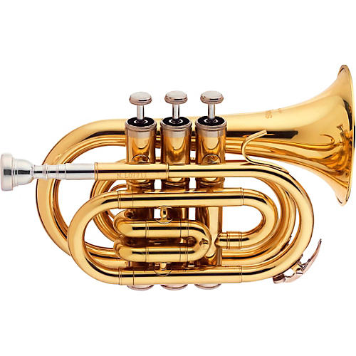 Stagg Bb Pocket Trumpet with Case and Mouthpiece thumbnail