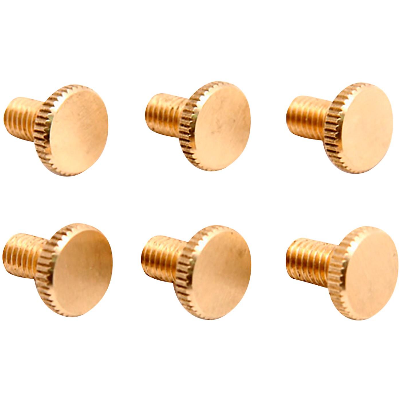 Floyd Rose Brass Fine Tuning Screws (6) thumbnail