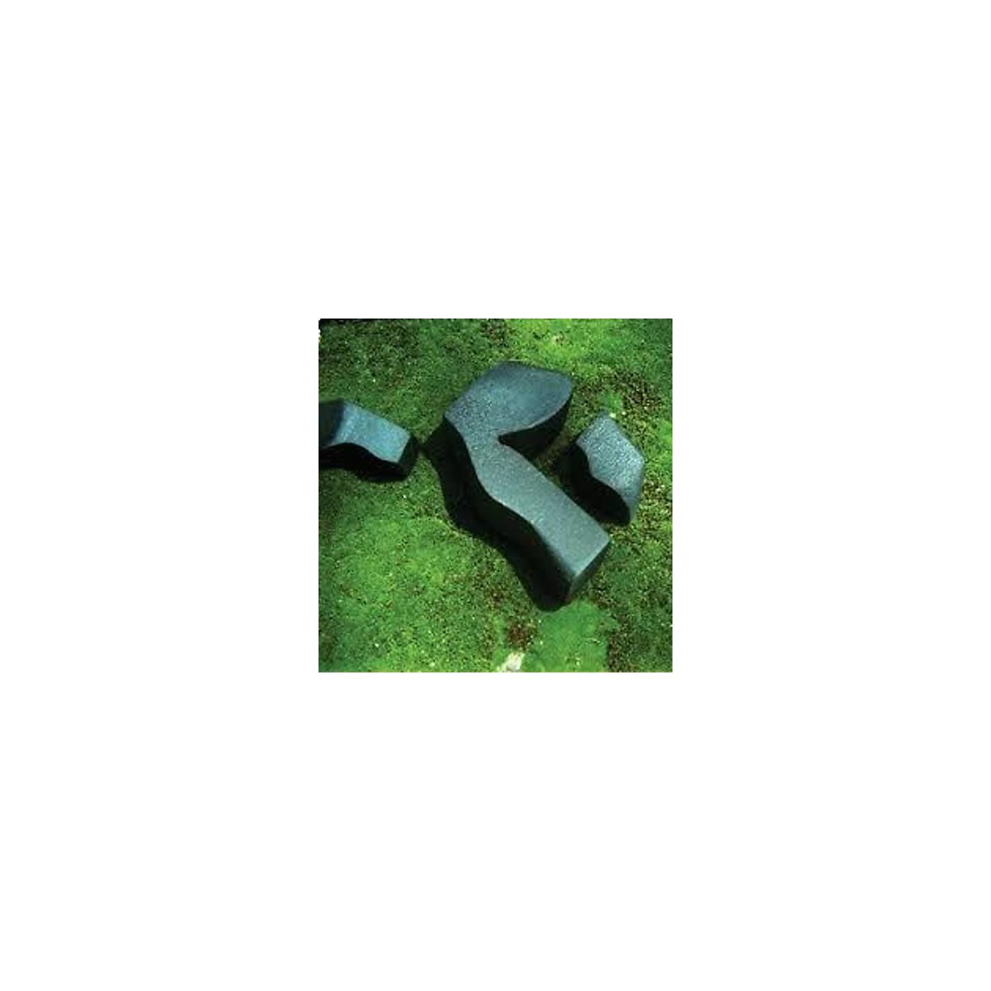 Alliance Camila Fuchs - Heart Pressed Between Stones thumbnail