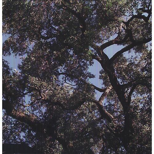 Alliance Charles Manson - Trees thumbnail