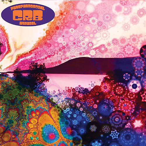 Alliance Chris Robinson - Phosphorescent Harvest thumbnail