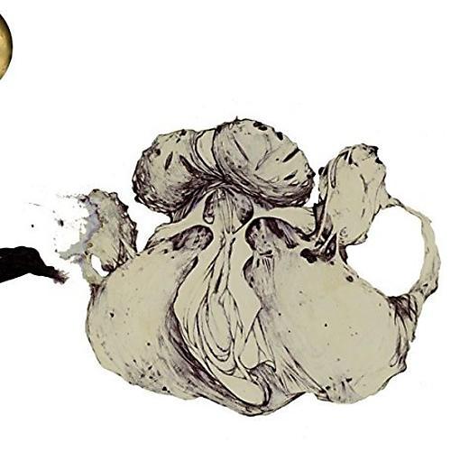 Alliance Coil - Ape Of Naples thumbnail
