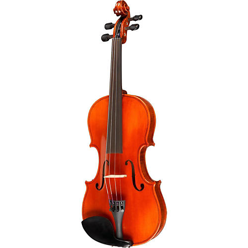 Ren Wei Shi Concert Model Violin Outfit thumbnail