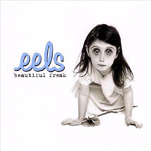 Alliance Eels - Beautiful Freak thumbnail