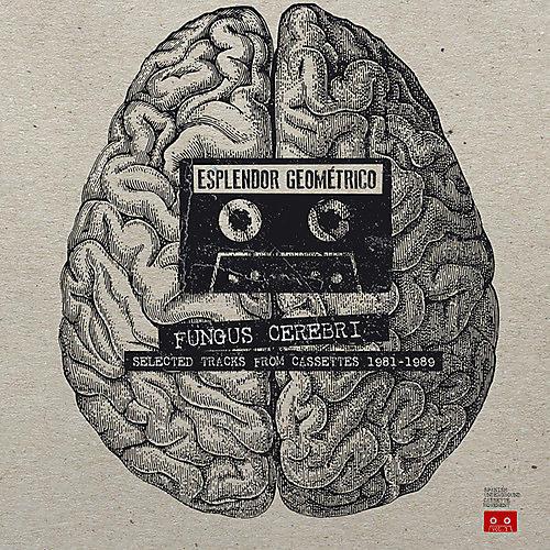 Alliance Esplendor Geom trico - Fungus Cerebri: Selected Tracks From Cassettes thumbnail