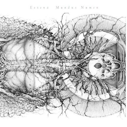 Alliance Essenza - Mundus Numen (Grey Vinyl) thumbnail