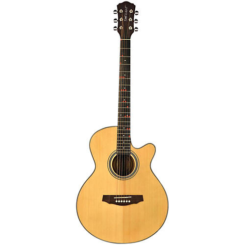 Fretlight FG-507 Acoustic Guitar with Built-in Lighted Learning System thumbnail