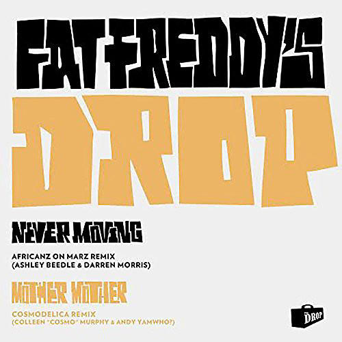 Fat Freddy S Drop This Room